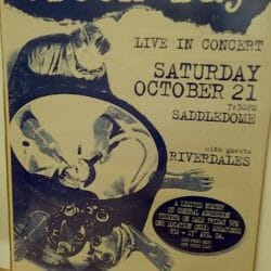 Green Day Concert Poster - 1995