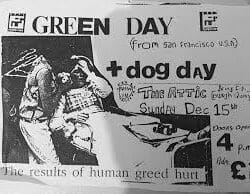 Green Day Concert Poster - 1991
